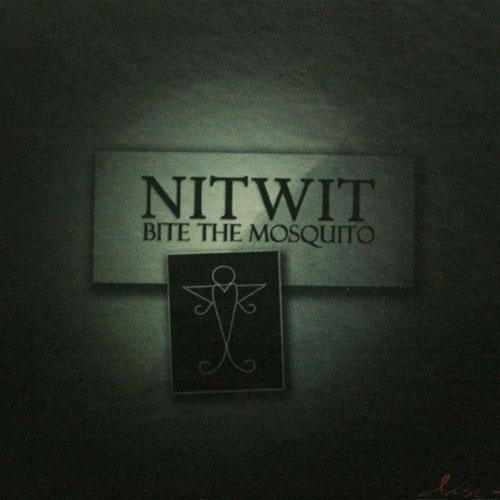 nitwit1